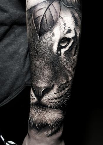 tigreluizotavio-01-01-01